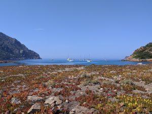 Bucht di Tuara