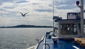 Überfahrt mit dem Schiff von Lauterbach auf Rügen zur Insel Vilm