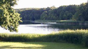 Blick vom Ufer aus auf den Stechlinsee an der Mecklenburgischen Seenplatte
