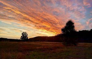 Sonnenuntergang bei Kleinzerlang an der Mecklenburgische Seenplatte