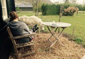 Urlaub auf dem Bauernhof in der Jurte mit Familienanschluss