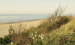 Der Strand von Renesse während unseres Familienurlaubs in Holland